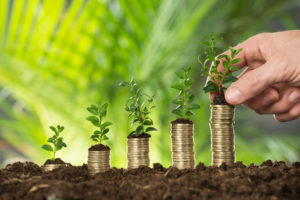 Close-up Of Person Hand Holding Small Plant On Stacked Coins