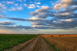 3 High Growth Stocks for Agriculture 3.0